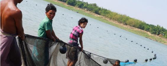 Seine fishing along the Ayeyarwady River