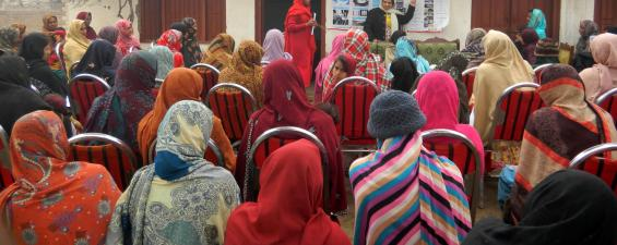 Dairy training for women in Chak